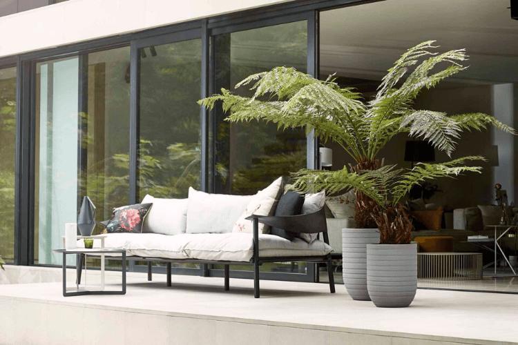 plantes-dexterieur-pour-terrasse