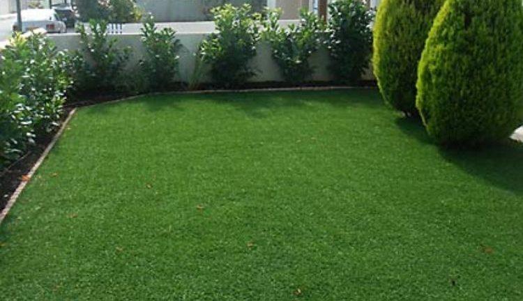comment faire une pelouse