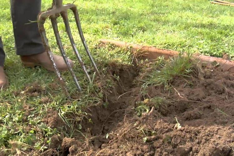 preparer son terrain avant pelouse